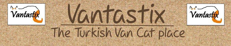 Vantastix Cat Club